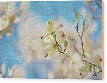 Dogwood Against Blue Sky Wood Print by Lois Bryan