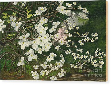 Wood Print featuring the painting Dogwoods Virginia by Melly Terpening