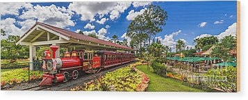 Dole Plantation Train 3 To 1 Aspect Ratio Wood Print