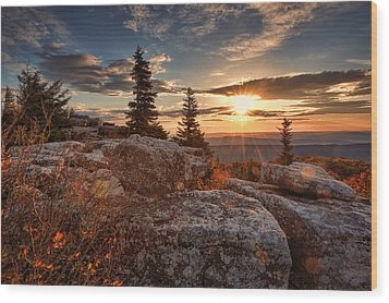 Dolly Sods Morning Wood Print by Jaki Miller
