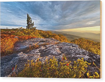 Dolly Sods Wilderness Wood Print by Bernard Chen