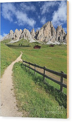 Dolomiti - Cir Group Wood Print