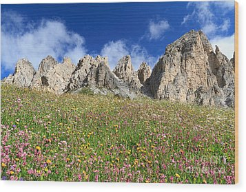 Wood Print featuring the photograph Dolomiti - Flowered Meadow  by Antonio Scarpi