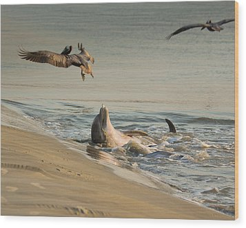 Dolphin Joy Wood Print by Patricia Schaefer