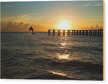 Dolphin Jumping Out Of The Sea In Florida Wood Print by Fizzy Image