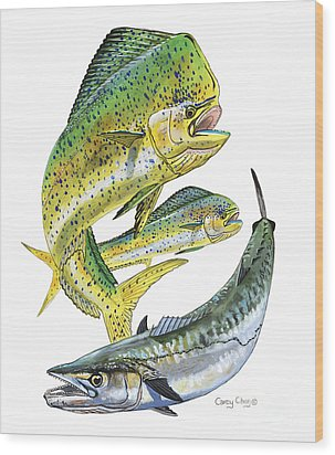 Dolphin Kingfish Wood Print by Carey Chen