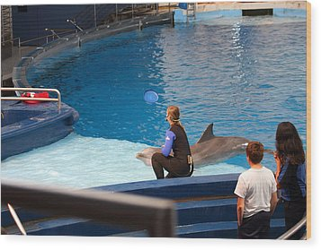 Dolphin Show - National Aquarium In Baltimore Md - 1212221 Wood Print by DC Photographer
