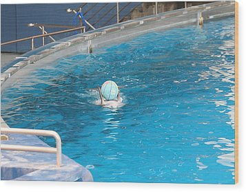 Dolphin Show - National Aquarium In Baltimore Md - 121236 Wood Print by DC Photographer
