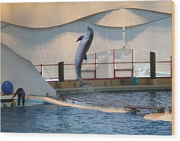 Dolphin Show - National Aquarium In Baltimore Md - 121254 Wood Print by DC Photographer