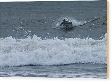 Wood Print featuring the photograph Dolphins At Play by Greg Graham