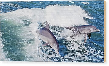 Dolphins Jumping Wood Print by Aimee L Maher Photography and Art Visit ALMGallerydotcom