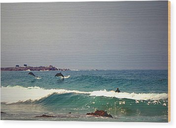 Dolphins Swimming With The Surfers At Asilomar State Beach  Wood Print by Joyce Dickens