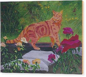 Domestic Tiger Wood Print