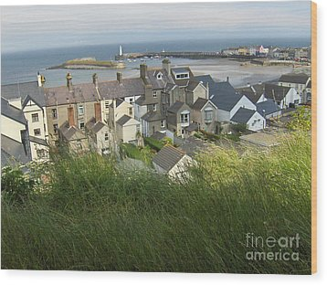 Donaghadee Northern Ireland View From The Moat Wood Print