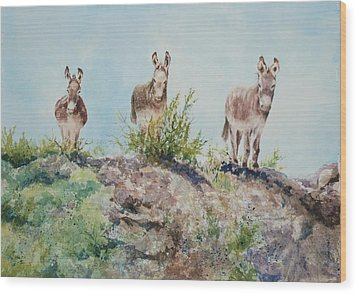Donkeys Wood Print