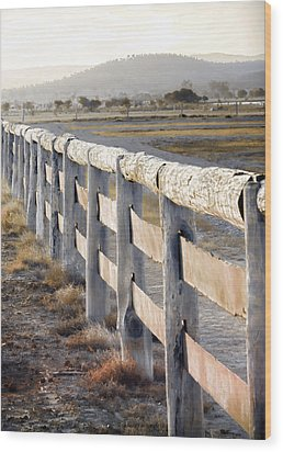 Don't Fence Me In Wood Print by Holly Kempe