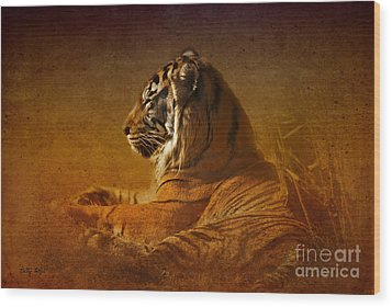 Don't Wake A Sleeping Tiger Wood Print by Betty LaRue