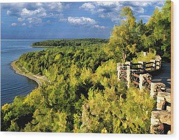 Door County Peninsula State Park Svens Bluff Overlook Wood Print