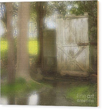 Door To Other Realms Wood Print by Inspired Nature Photography Fine Art Photography