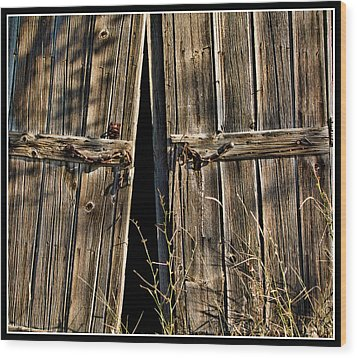 Doors Wood Print by Ron Roberts