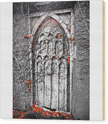 Doorway In Cork Wood Print by Maeve O Connell