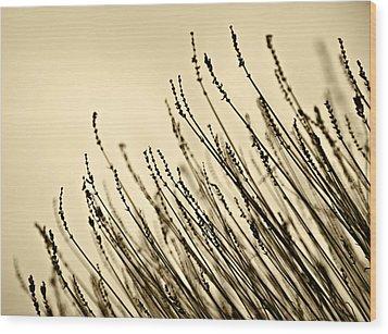 Dorment Wood Print