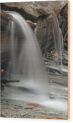 Double Cascade Wood Print by Darleen Stry