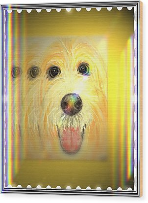Double Dog Wood Print by Desline Vitto