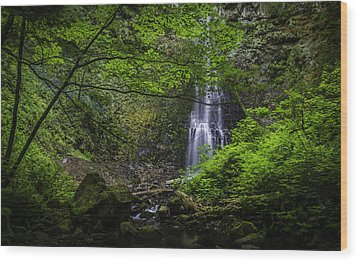 Double Falls Wood Print