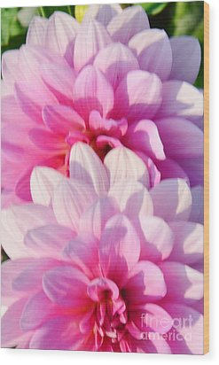 Double Pink Wood Print by Kathleen Struckle