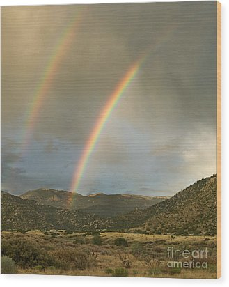 Double Rainbow In Desert Wood Print by Matt Tilghman