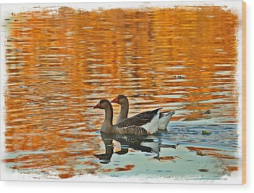 Wood Print featuring the photograph Doubles by Lynn Hopwood