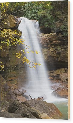 Douglas Falls Wood Print