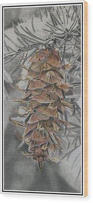 Douglas Fir Pine Cone Wood Print