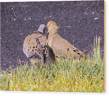 Doves Kisses Wood Print by Zina Stromberg