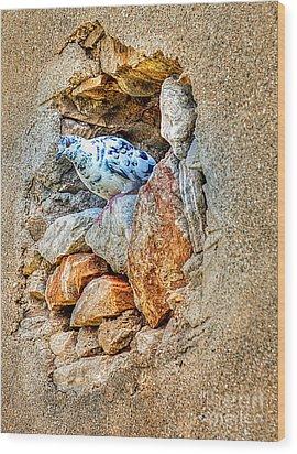 Dove's Nest Wood Print