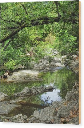 Down By The Creek Wood Print by Donna Blackhall