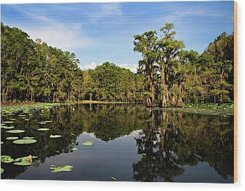 Down In The Bayou Wood Print by Lana Trussell