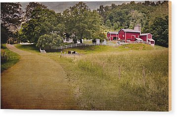 Down On The Farm Wood Print by Bill Wakeley