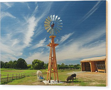 Wood Print featuring the photograph Down On The Farm by Elaine Franklin