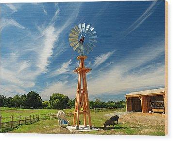 Down On The Farm Wood Print by Elaine Franklin