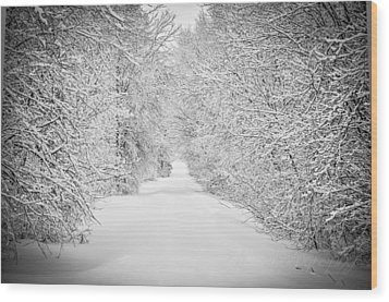 Down The Lane Wood Print by BandC  Photography
