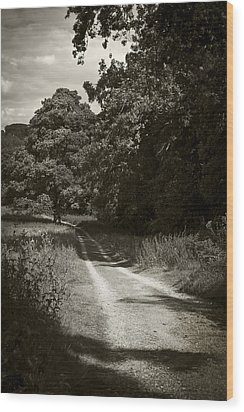 Wood Print featuring the photograph Down The Old Farm Track by Stewart Scott