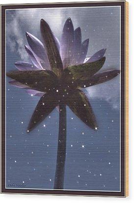 Down Under  Lotus Wood Print by Debra     Vatalaro
