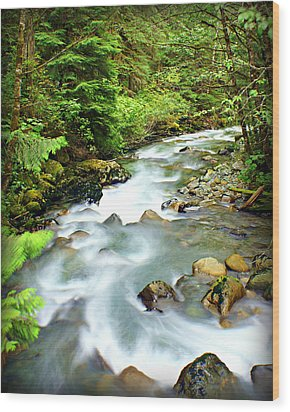 Downstram In The Olympics Wood Print by Marty Koch