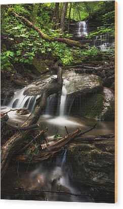 Downstream Wood Print by Mark Papke