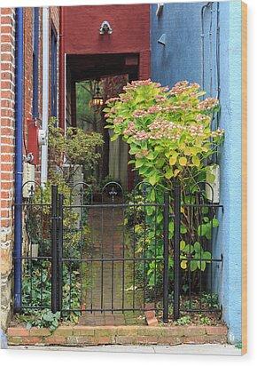 Downtown Garden Path Wood Print by Jennifer Casey
