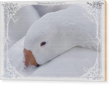 Downy Soft Mother Goose Wood Print by Elaine Manley