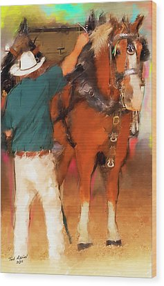 Draft Horse And Trainer Wood Print by Ted Azriel