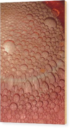 Wood Print featuring the photograph Dragon Eggs by Mike Breau